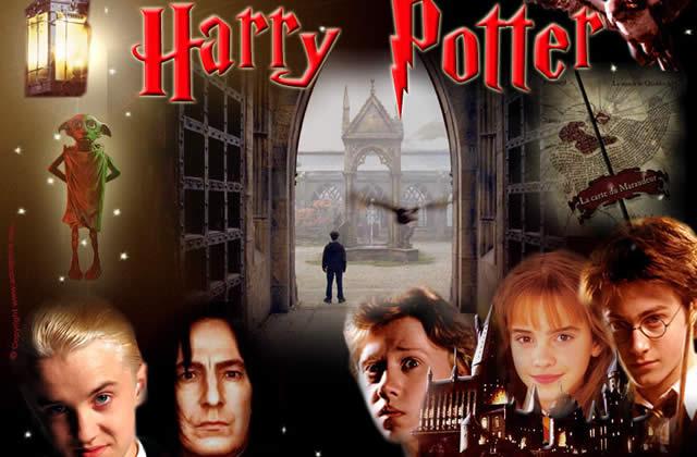 Une journée chez Harry Potter ?