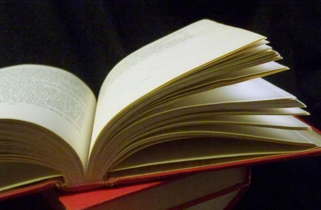 Au secours, Pardon : un roman de Frederic Beigebeder