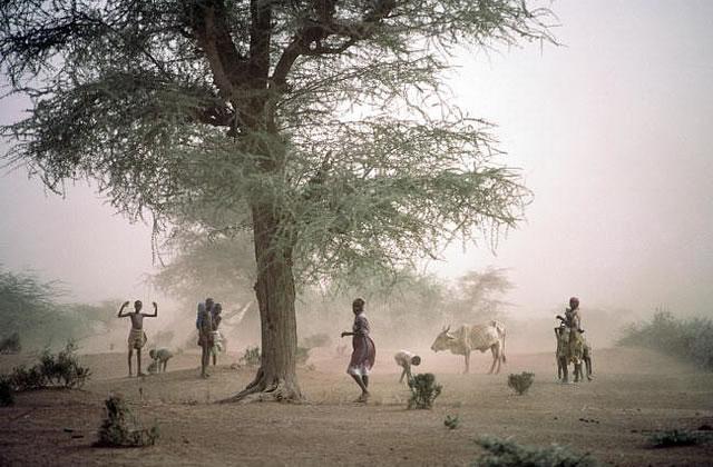 Je veux comprendre… la crise au Kenya