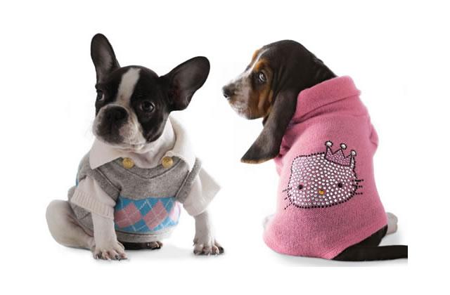 Des vêtements pour nos chiens