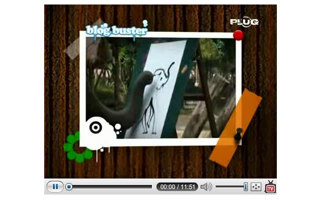 Amies belges fans de PlugTV, bongour !