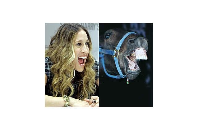 Sarah Jessica Parker ressemble à un cheval
