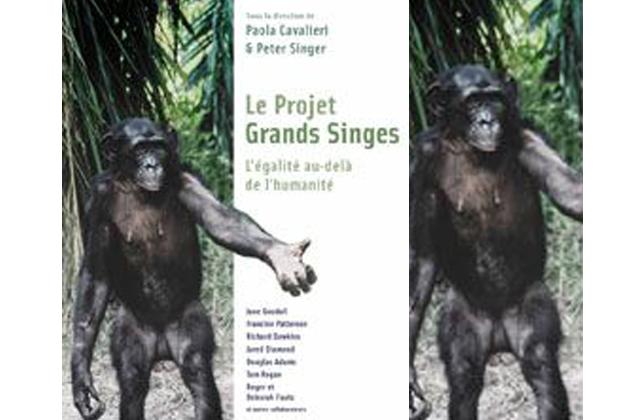 Des droits de l'Homme pour… les singes