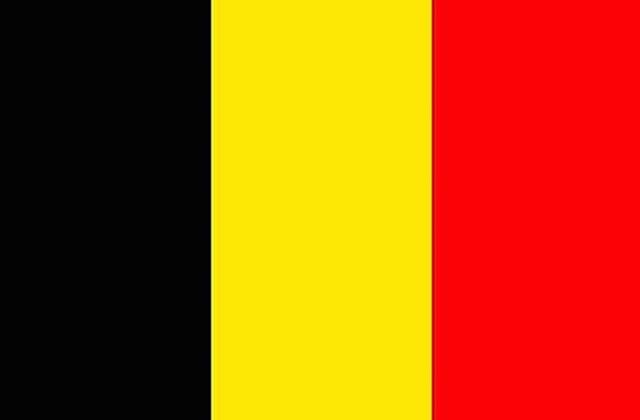 Belgique: un Wallon sur deux dit oui à la France