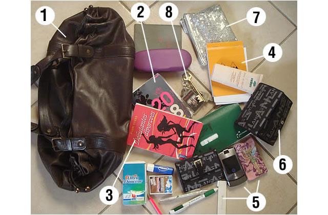 Le sac de Aarycia