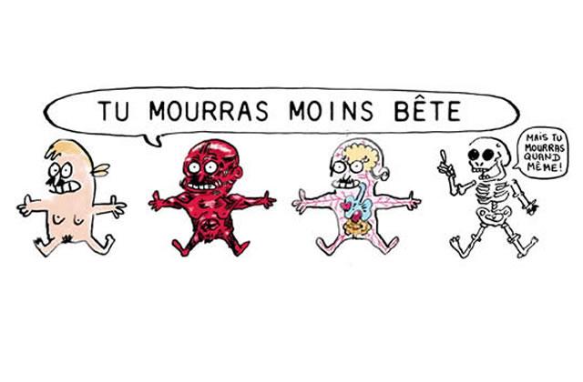« Tu mourras moins bête », le blog BD drôle et instructif