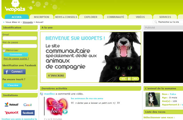 Woopets, le réseau social des chats, chiens et NAC