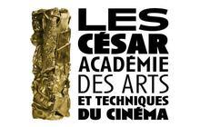 Florence Foresti aux César 2009