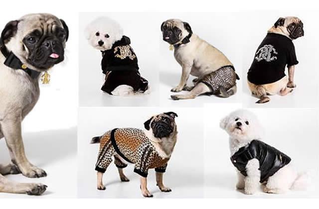 Roberto Cavalli habille les chiens – au secours !