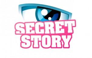 Lien permanent vers Secret Story, vivement que ça s'arrête
