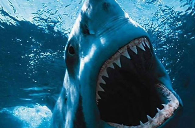 [1 Phobie, des films] L'aquaphobie