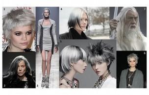Lien permanent vers Cheveux gris : le nouveau noir ou la tendance mamie