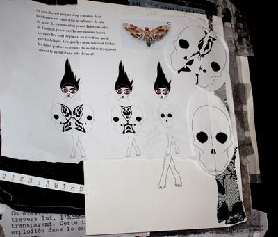 Exemple d'un carnet de recherches