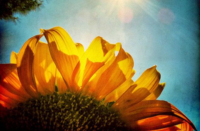 Cinq raisons d'aimer le retour des beaux jours