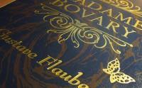 Madame Bovary, par Kamel Toe