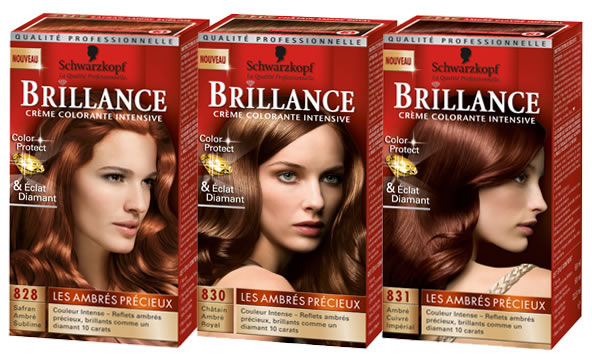 garnier coloration catalogue