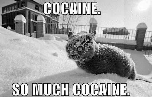 Dépotoir a images - Page 5 Cocaine