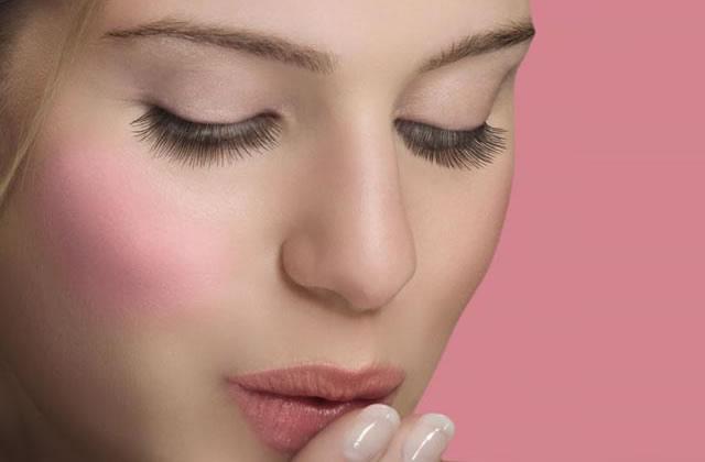 Comment choisir son blush - Comment donner du plaisir a une femme au lit ...