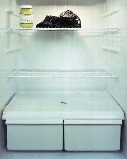82 Vous êtes ce que vous mangez, des photos de frigos américains