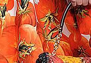 Lien permanent vers Dolce & Gabbana ouvre un potager pour le Printemps Été 2012