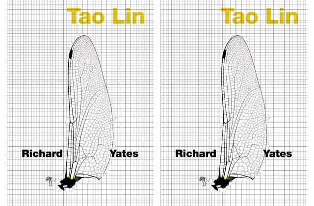 Richard Yates, un roman de Tao Lin