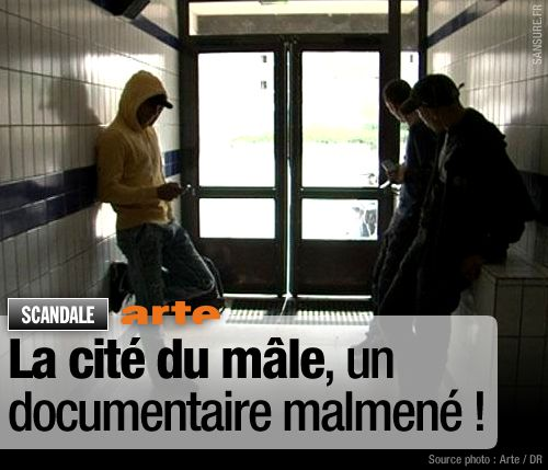 En replay #1   Sélections de reportages et de documentaires cite male copie 1