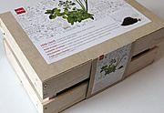 Lien permanent vers La caissette d'herbes aromatiques de chez HEMA