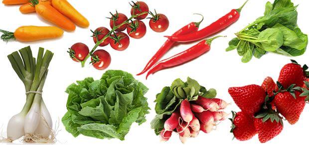 fruitslegumesbalcon Créer et soccuper dun petit potager 100% bio