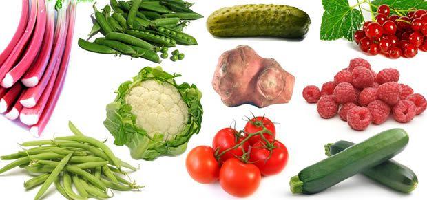 fruitslegumesjardin Créer et soccuper dun petit potager 100% bio
