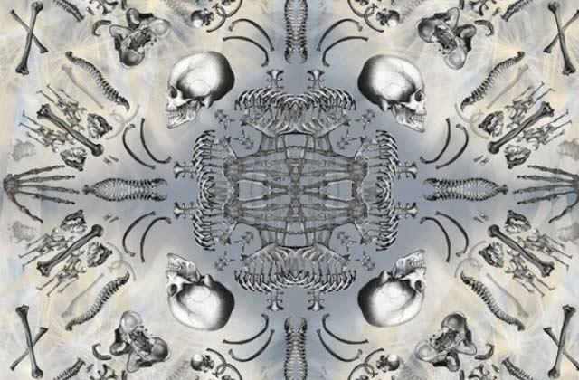 Antagoniste, le cabinet de curiosités des foulards
