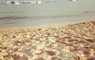 Lien permanent vers Jack Parker à Cannes – Jour 3 – Ezra Miller, le Carlton et le bateau Arte