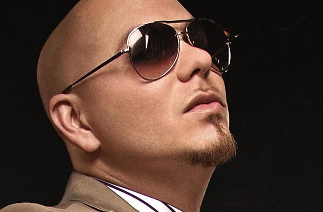 A quoi sert Pitbull ?