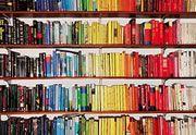 Lien permanent vers Et les 10 livres les plus difficiles à lire sont…