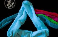 The Sock Covers – Le Tumblr de la Semaine