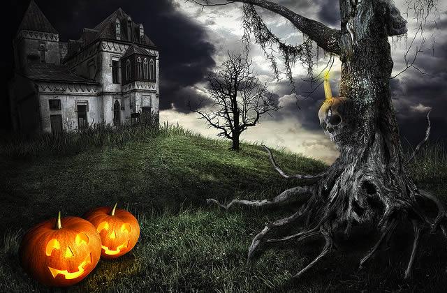 Décorations d'Halloween : vos idées et astuces ! – Sur le forum
