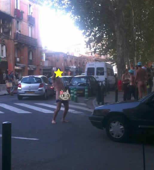 Toulouse   Les Bons Plans de vos Villes chat bite