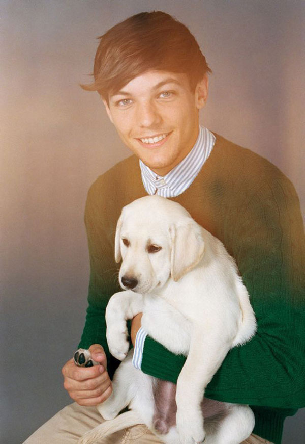 One Direction et des chiots : le photoshoot ridicule louis