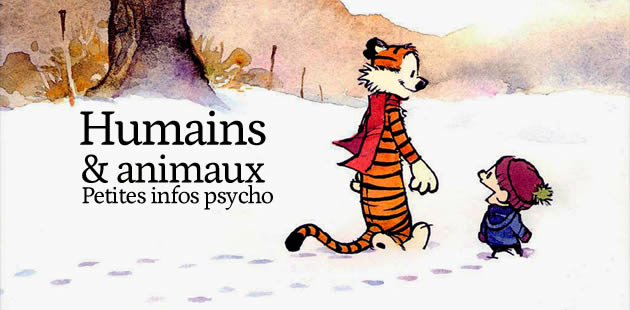 Humains et animaux : petites infos psycho