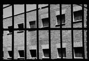 Citad'elles : le magazine pour les femmes en prison