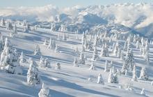 Shopping : soins et protection pour les sports d'hiver