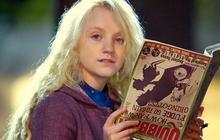 La Gazette du Forum #13 – Émotion, Harry Potter et job d'été