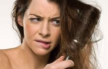 Shopping : des brosses pour tous les cheveux