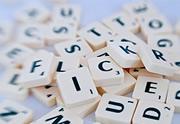 Lien permanent vers Les nouveaux mots du dictionnaire pour 2014