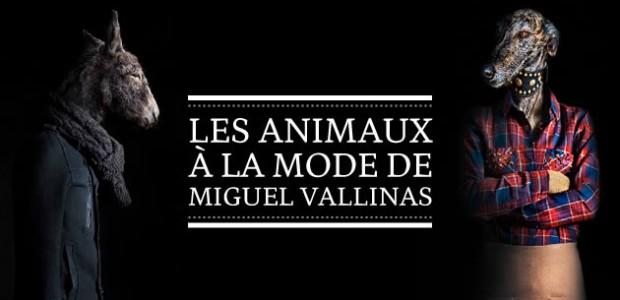 Les animaux à la mode de Miguel Vallinas