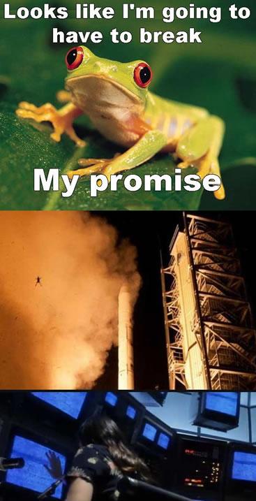 frogrocketmeme Frog rocket et les photobombs improbables — Mèmologie