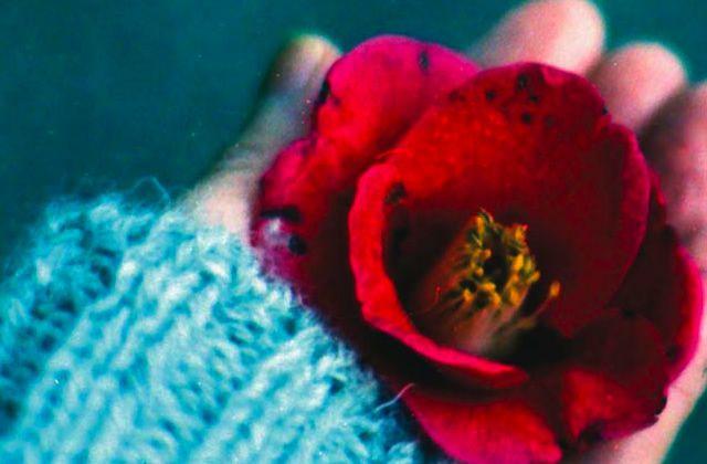 «Le restaurant de l'amour retrouvé », un très joli roman japonais