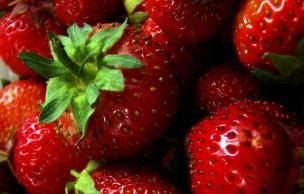 Lien permanent vers Sept aliments utiles en cosmétique