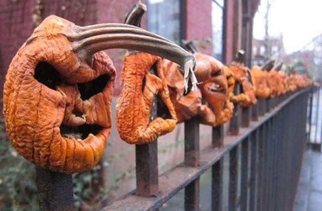 Les trouvailles d'Internet pour bien commencer la semaine #Halloween