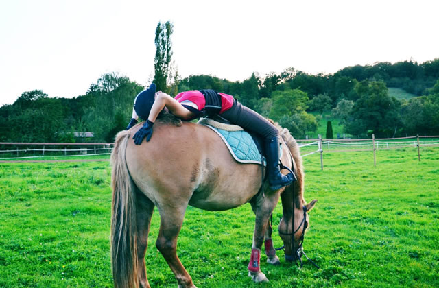 Équitation : la hausse de la TVA qui fait peur