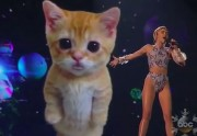 Lien permanent vers Miley Cyrus et son chaton géant virtuel